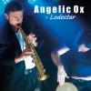 Angelic Ox
