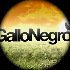 Gallo Negro Music
