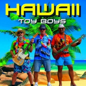 Hawaii Toy Boys