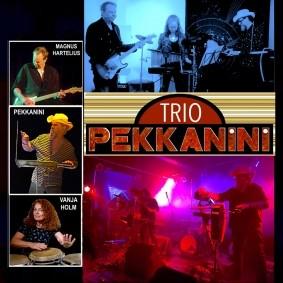 Trio Pekkanini