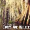 Tribute to Tony Joe White