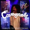 Coversnake (Whitesnake)